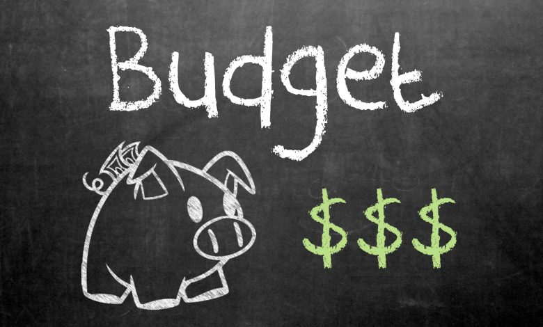 Small business budget